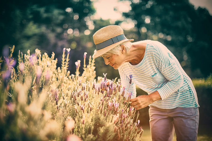 3 Tips to Help Seniors Stay Healthy This Spring